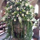 A J Coles Flowers