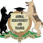 Specialist Dog Training