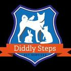 Diddly Steps