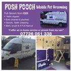 Posh Pooch
