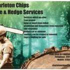 Charleton Chips Tree Services