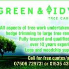 Green and tidy tree care  logo