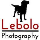 Lebolo Pet Photography