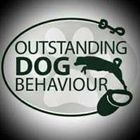 outstanding dog behaviour
