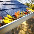 Gutter Cleaning Bellingham