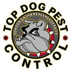 Top Dog Pest Control