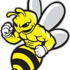 BEE FIT GYM
