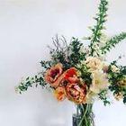 Wild Renata Flowers