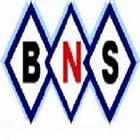 BNS Allied Limited