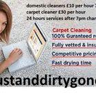 dustanddirtygone.co.uk