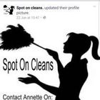 Spot on cleans