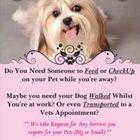 Furry Walkz pet services
