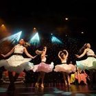 Timeless ShowGirls & Events for Professional Dancers