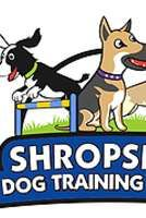 Shropshire Dog Training Centre