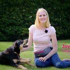 Joyful Dogs