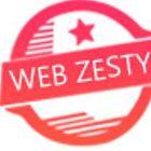 Webzesty Pvt Ltd