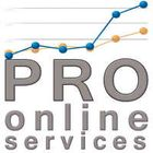 PRO OnLine Services - website development