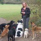 Gina's Home & Pet Patrol