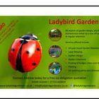 Ladybird Gardeners