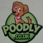 Poodly Care Group Ltd
