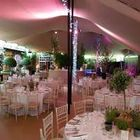 Countryside Events Marquee and Stretch tents