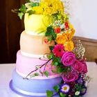 Couture Cakes Hampshire