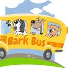Bark Academy
