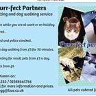 Purr-fect Partners
