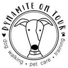 Dynamite on Tour | Dog Walker and Pet Sitter in Loughborough