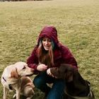 Kassie Woods Animal Behaviour and Training