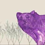 Adrian Mills Design profile image.
