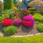 Alice In Gardening Land profile image.