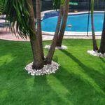 Artificial Grass in Boca Raton Florida profile image.