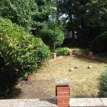 Birmingham Gardens profile image.