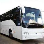 Birmingham Minibus Hire profile image.