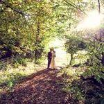 Daze Photography & Videography profile image.