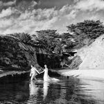de la Barra | photography profile image.