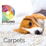 Dynamo Clean profile image.