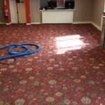 Eco Care Carpet Cleaning  profile image.