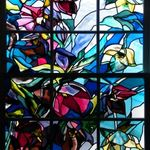 Emma Butler-Cole Aiken Stained Glass profile image.