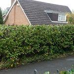 Evans home and landscapes  profile image.