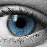 Focus Litigation profile image.