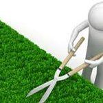 gardening services profile image.