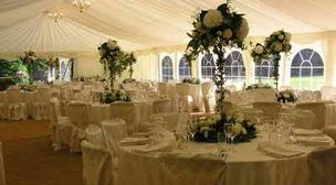 Photo by Harlequin Marquee Hire