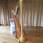 Harriet Adie  - Harpist profile image.