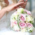 Lawless Rose Photography profile image.