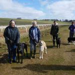 Leading Canines profile image.