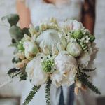 Lily Lupin Floral Design profile image.