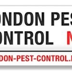 London pest control profile image.