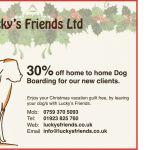 Lucky's Friends Ltd profile image.